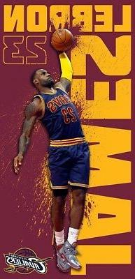 New Lebron James Dunk Cleveland Cavaliers Cavs NBA Beach Bat